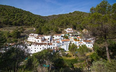 The Acebuchal a magical village in Andalusia